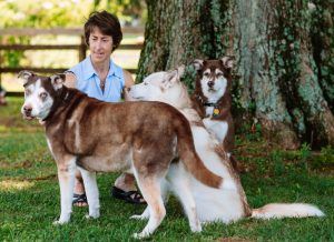sharon chamberlin and dogs