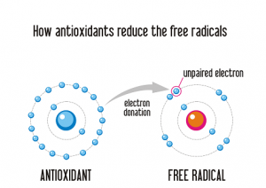 antioxidants and free radicals
