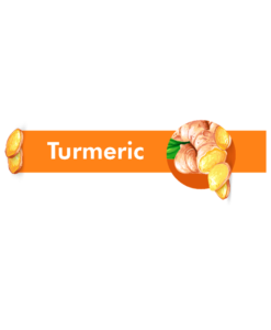 science of spices turmeric cover
