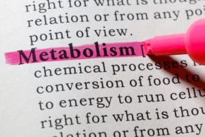 metabolism definition