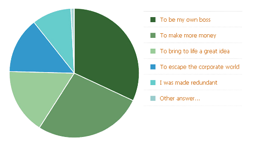 a graph showing the reasons people choose to open their own business